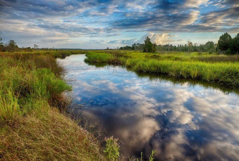 Thomas Creek