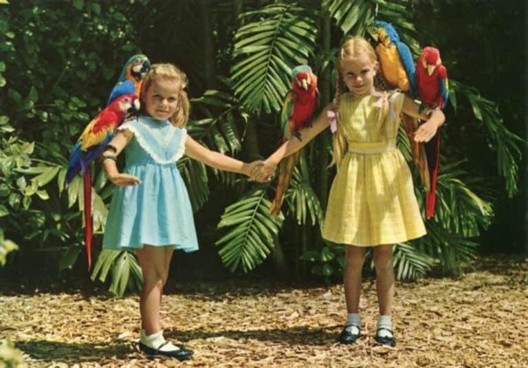 Jungle Island Florida